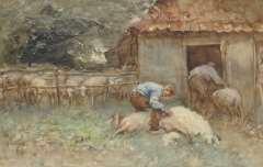 Nat W.H. van der - Schapen scheren, aquarel op papier 34,4 x 52,6 cm , gesigneerd l.o.
