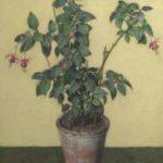 Wouters W.H.M. - Fuchsia in bloempot, olieverf op doek 61,5 x 50,7 cm, gesigneerd r.o.