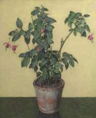Wouters W.H.M. - Fuchsia in bloempot, olie op doek 61,5 x 50,7 cm , gesigneerd r.o.