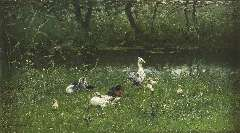 Maris W. - Ducks and ducklings by the waterside, oil on canvas 23.5 x 41.3 cm , signed l.l.