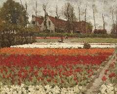 Koster A.L. - De tulpenkwekerij 'Leeuwenstein' in Hillegom, olieverf op doek 60 x 73,2 cm, gesigneerd r.o.