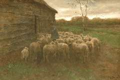 Mauve A. - Sheep feeding, oil on canvas 55.5 x 80.7 cm , signed l.r.