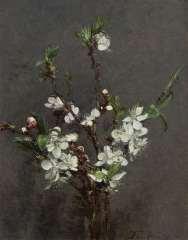 Fantin-Latour I.H.J.T. - Bloesemtakken, olie op doek 27 x 21,2 cm , gesigneerd l.o. en gedateerd '73