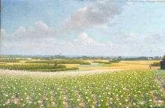 Hart Nibbrig F. - Panorama van De Eng bij Blaricum, olie op doek 60,2 x 90,7 cm , gesigneerd r.o. en gedateerd 1902