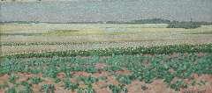 Breman A.J. - Zomerlandschap met aardappel- en boekweitvelden in het Gooi, olie op doek 18,7 x 40,5 cm , gesigneerd r.o. en gedateerd 'L 1 7 1903'