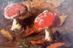 Wandscheer M.W. - Vliegezwammen, olieverf op paneel 17,4 x 24,9 cm , gesigneerd l.o.