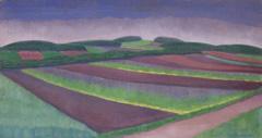 Louber L.M. - Roggenvelden, Blaricum, olieverf op doek 38,4 x 73,2 cm, r.o. en gedateerd '21