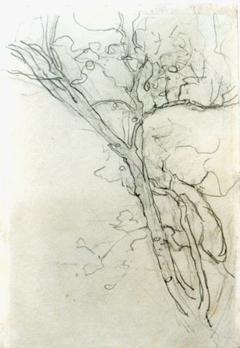 Mondriaan P.C. - Schets van een tak, potlood op papier 16,8 x 11,7 cm cm , te dateren ca. 1905