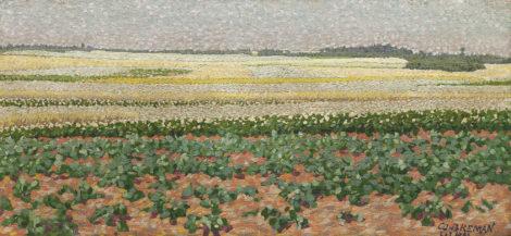 Breman A.J. - Zomerlandschap met aardappel- en boekweitvelden in het Gooi, olieverf op doek 18,7 x 40,5 cm, gesigneerd r.o. en gedateerd 'L 1 7 1903'